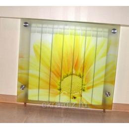 Экран на батарею из закаленного стекла
